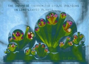 C11 6 Japanese Theorem in Long Leaved Plants