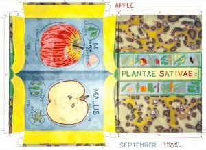 K15-09-Plantae-sativae
