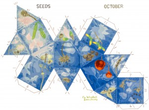 K15-10-Seeds