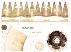 K15-11-Mushroom